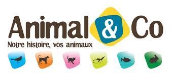 animal&co-suivre-mon-colis